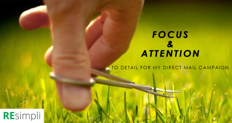 Focus and Attention to Detail for My Direct Mail Campaign by Roman Tomkiv